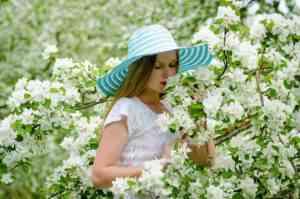 פרחים לגינה