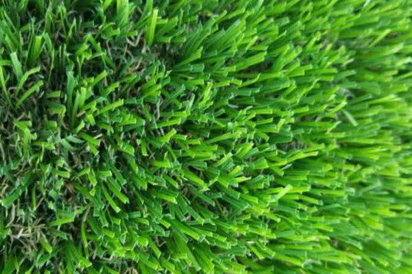 בחירה נכונה של דשא סינטטי
